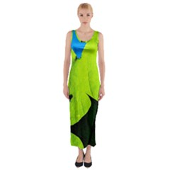 Window Of Opportunity Fitted Maxi Dress by FunnyCow