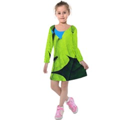 Window Of Opportunity Kids  Long Sleeve Velvet Dress