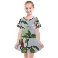 Lunar Moths Kids  Smock Dress