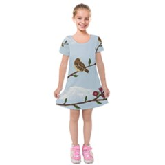 Robin On Plumb Tree Kids  Short Sleeve Velvet Dress