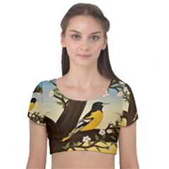 Oriole Velvet Short Sleeve Crop Top
