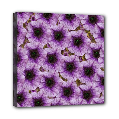 The Sky Is Not The Limit For Beautiful Big Flowers Mini Canvas 8  X 8  (stretched) by pepitasart