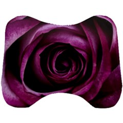 Plant Rose Flower Petals Nature Head Support Cushion by Sapixe