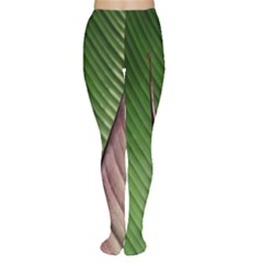 Leaf Banana Leaf Greenish Lines Tights by Sapixe