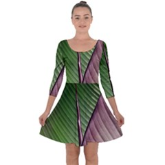 Leaf Banana Leaf Greenish Lines Quarter Sleeve Skater Dress