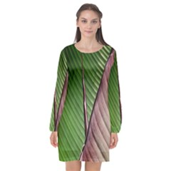Leaf Banana Leaf Greenish Lines Long Sleeve Chiffon Shift Dress