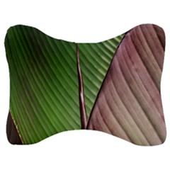 Leaf Banana Leaf Greenish Lines Velour Seat Head Rest Cushion by Sapixe