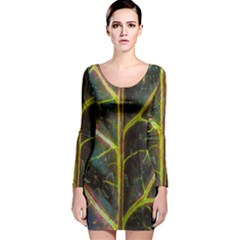 Leaf Abstract Nature Design Plant Long Sleeve Velvet Bodycon Dress