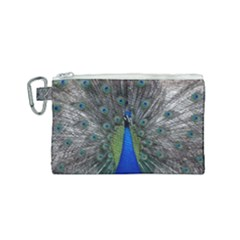 Peacock Bird Animals Pen Plumage Canvas Cosmetic Bag (small) by Sapixe