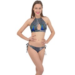 Peacock Bird Animals Pen Plumage Cross Front Halter Bikini Set