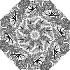 Drawing Leaves Nature Picture Folding Umbrellas by Sapixe