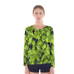 Green Hedge Texture Yew Plant Bush Leaf Women s Long Sleeve Tee by Sapixe