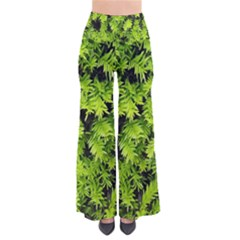 Green Hedge Texture Yew Plant Bush Leaf So Vintage Palazzo Pants by Sapixe