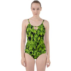 Green Hedge Texture Yew Plant Bush Leaf Cut Out Top Tankini Set