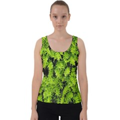 Green Hedge Texture Yew Plant Bush Leaf Velvet Tank Top by Sapixe