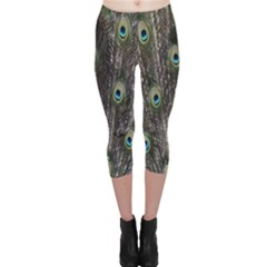 Background Peacock Feathers Capri Leggings  by Sapixe
