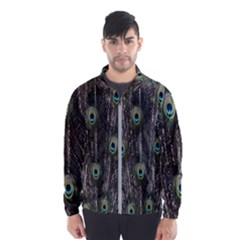Background Peacock Feathers Windbreaker (men) by Sapixe