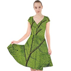 Butterbur Leaf Plant Veins Pattern Cap Sleeve Front Wrap Midi Dress