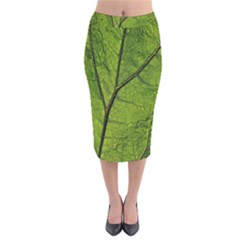 Butterbur Leaf Plant Veins Pattern Velvet Midi Pencil Skirt