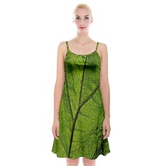 Butterbur Leaf Plant Veins Pattern Spaghetti Strap Velvet Dress