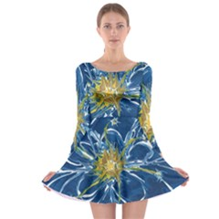 Blue Star Flower Long Sleeve Skater Dress