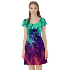 Bluegreen And Pink Fractal Short Sleeve Skater Dress by bloomingvinedesign