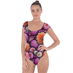 Pink And Orange Dahlias Collage Short Sleeve Leotard