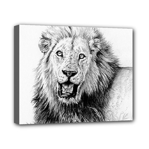 Lion Wildlife Art And Illustration Pencil Canvas 10  X 8  (stretched)