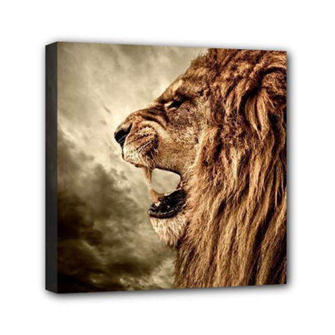 Roaring Lion Mini Canvas 6  X 6  (stretched) by Samandel