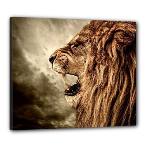 Roaring Lion Canvas 24  X 20  (stretched)
