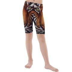 The Tiger Face Kids  Mid Length Swim Shorts