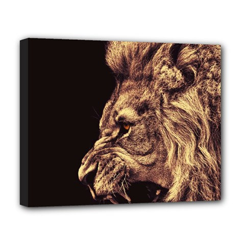 Angry Male Lion Gold Deluxe Canvas 20  X 16  (stretched)