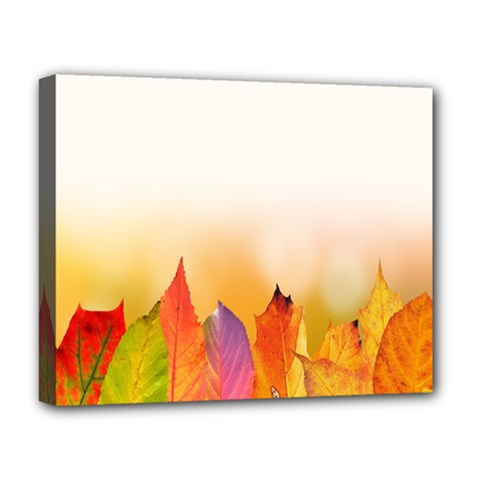 Autumn Leaves Colorful Fall Foliage Deluxe Canvas 20  X 16  (stretched) by Samandel