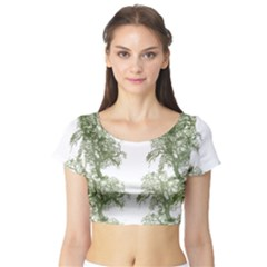 Trees Tile Horizonal Short Sleeve Crop Top by Samandel