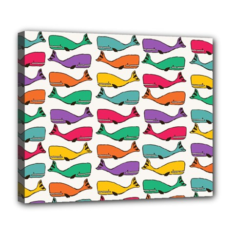 Fish Whale Cute Animals Deluxe Canvas 24  X 20  (stretched)