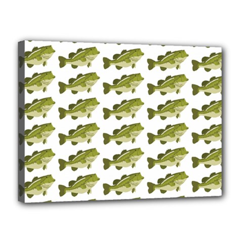 Green Small Fish Water Canvas 16  X 12  (stretched)