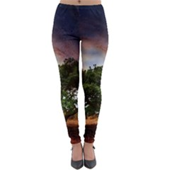Lone Tree Fantasy Space Sky Moon Lightweight Velour Leggings