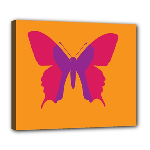 Butterfly Wings Insect Nature Deluxe Canvas 24  X 20  (stretched) by Nexatart