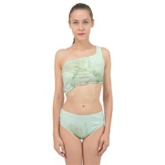 Pastel Roses Background Romantic Spliced Up Two Piece Swimsuit