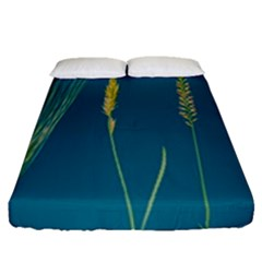 Grass Grasses Blade Of Grass Fitted Sheet (queen Size)