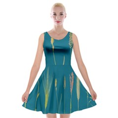 Grass Grasses Blade Of Grass Velvet Skater Dress