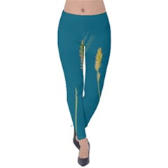 Grass Grasses Blade Of Grass Velvet Leggings by Nexatart
