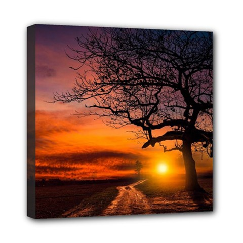 Lonely Tree Sunset Wallpaper Mini Canvas 8  x 8  (Stretched)