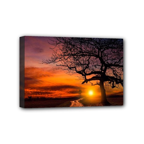 Lonely Tree Sunset Wallpaper Mini Canvas 6  x 4  (Stretched)