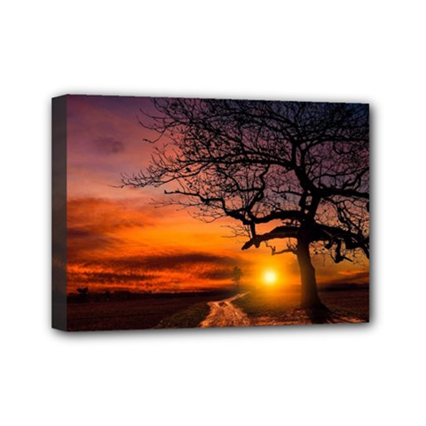 Lonely Tree Sunset Wallpaper Mini Canvas 7  x 5  (Stretched)