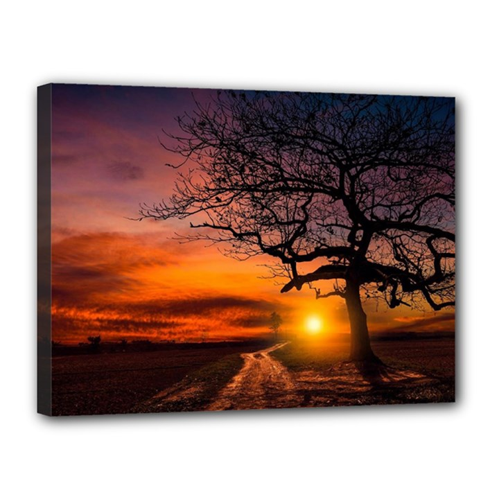 Lonely Tree Sunset Wallpaper Canvas 16  x 12  (Stretched)