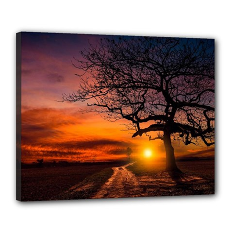 Lonely Tree Sunset Wallpaper Canvas 20  x 16  (Stretched)