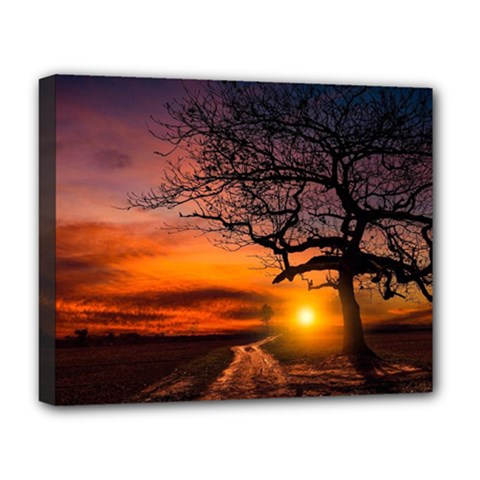 Lonely Tree Sunset Wallpaper Deluxe Canvas 20  X 16  (stretched)