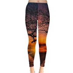 Lonely Tree Sunset Wallpaper Leggings