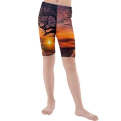 Lonely Tree Sunset Wallpaper Kids  Mid Length Swim Shorts